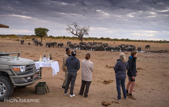 Game Drive Sundowners