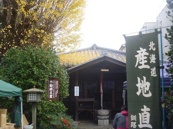 Fudomyoodo