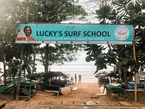 ‪Lucky's Surf School‬