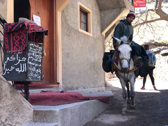 Agafay Desert & Berber villages & Atlas Mountains, Full Day Trip From Marrakech: Donkey and a bereber man