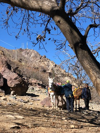 Agafay Desert & Berber villages & Atlas Mountains, Full Day Trip From Marrakech: landscape