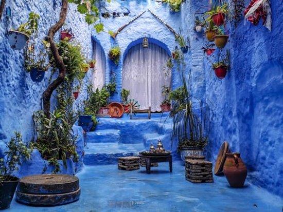 the bleu city