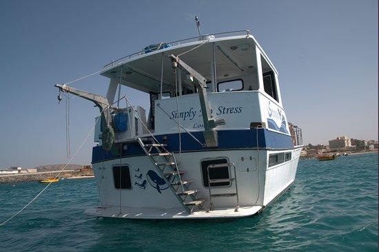 Photos de Sea Adventures Boavista - Simply No Stress - Photos de Boa Vista - Tripadvisor