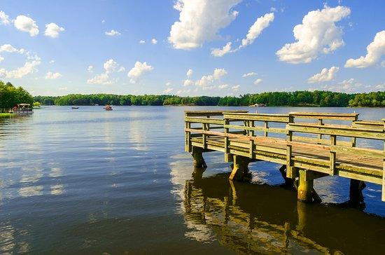 Dinwiddie, VA: Lake Chesdin