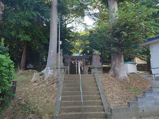 石段の参道にある二番目の鳥居(二の鳥居)の少し手前の石段の両側にある大木が実に見事です。