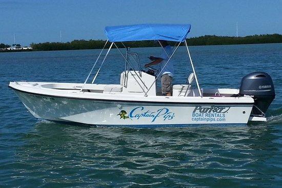 Captain Pips Marina Boat Rentals