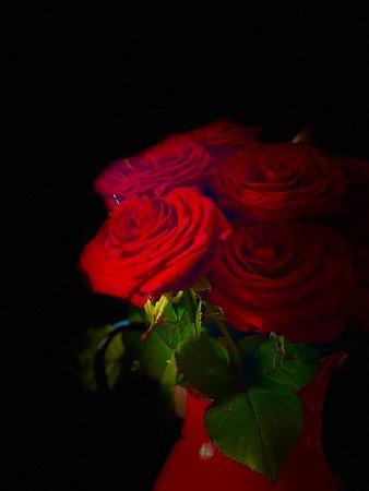 de rozen die voor me klaarstonden...