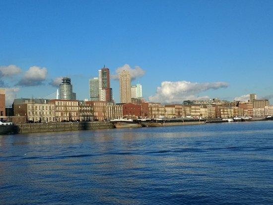 Rondvaart door de haven van Rotterdam