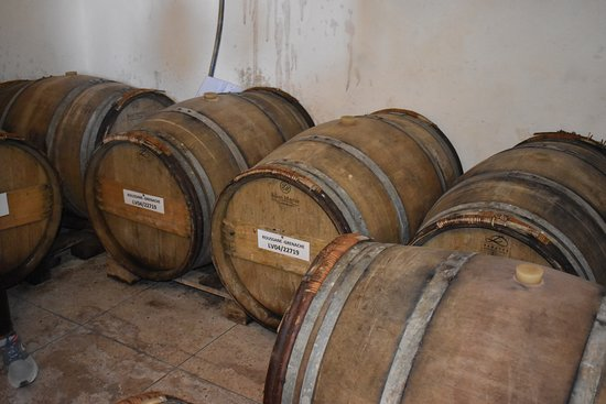 Private Day Trip to Vineyard Val d'Argan included Winetasting Lunch, per person: Oak barrels are being stored in his cave.