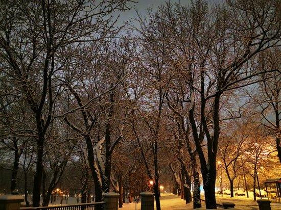 Enjoy beautiful walks in nature two blocks away