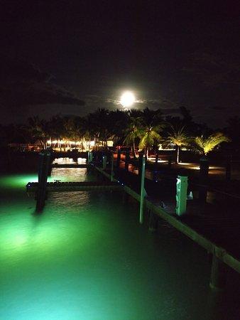 Atlantic Bay Resort: Dock View