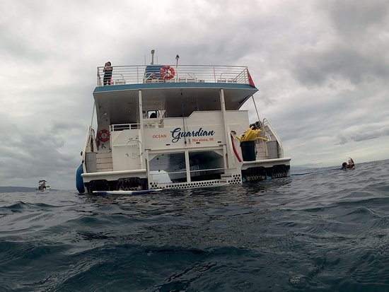 Molokini and Turtle Arches Snorkeling Trip from Ma'alaea Harbor: Great boat with a platform that allows you to walk down and ease into the water. Nice and safe for launching! Thanks Ocean Guardian for living up to your name and watching over us!