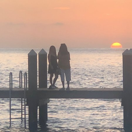 Sunset, shrimp, sweet
