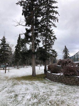 Finally snow