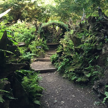 Biddulph Grange Garden: The Stumpery
