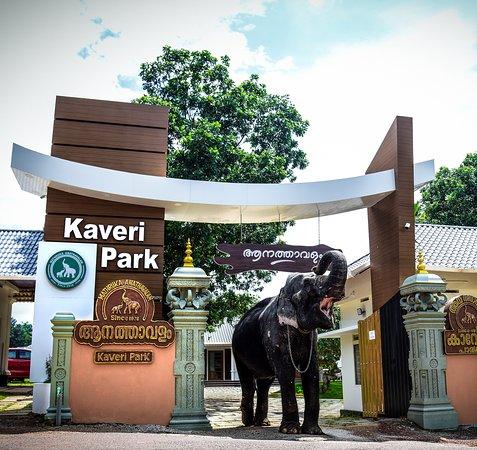 Kaveri Elephant Theme Park