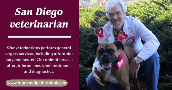 Our San Diego veterinarian hospital practices collaborative medicine and is comprised of the following departments:  >. Emergency and Critical Care >. Internal Medicine >. Neurology >. Interventional Radiology