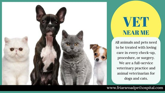 San Diego, Californië: Our Vet near me provides urgent care when your pets are in crisis. Vet near me is the perfect complement to your primary care veterinarian, for those times when more advanced intervention is needed, or immediate intensive support is required.