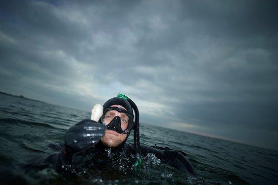 Fåborg, Danmark: Tag med Øhavsmuseet ud i det fri. Prøv en snorkeltur, hvor du sammen med museets guider kan finde spor efter stenalderen allerede på 1 meters dybt vand.