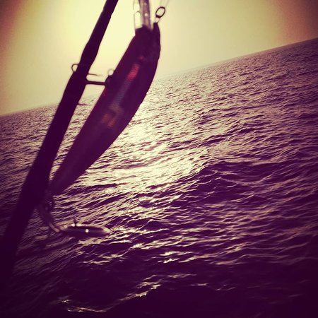 Lulu boats - Boat Charter Abu Dhabi