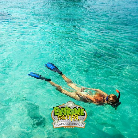 Ask for our snorkel tours