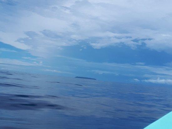 Osa Peninsula, Costa Rica: - Dis, c'est encore loin, isla del Cano ? - Tais toi et rame !