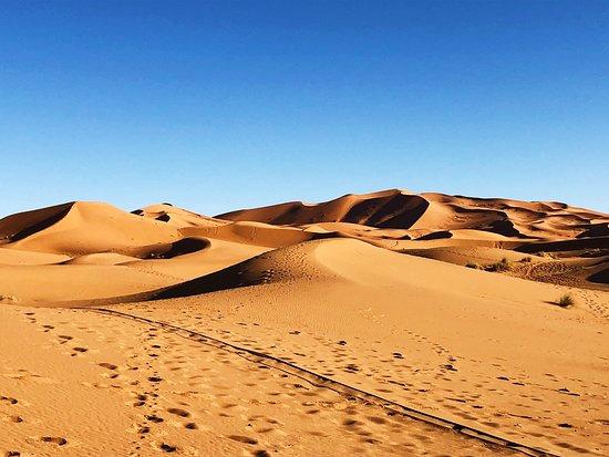 Best choice to Sahara