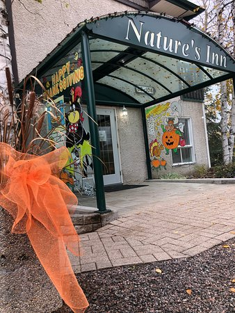 Thanksgiving and Halloween murals by local window artist