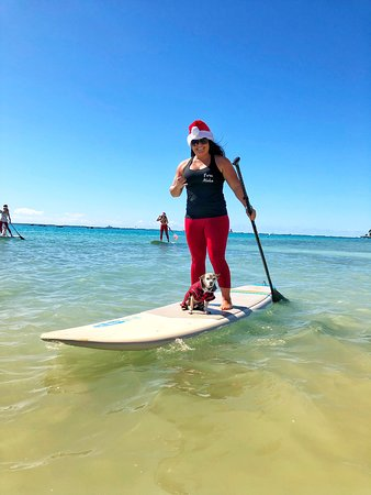 Christmas time in Hawaii! It doesn't get much better than paddle boarding with pups and Santa hats!! Mele Kalikimaka from the team at Pure Aloha Adventures.....and Taco and Aston!