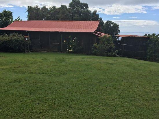 Kona Coffee Living History Farm - 캡틴쿡 - Kona Coffee Living History Farm의 리뷰 - 트립어드바이저