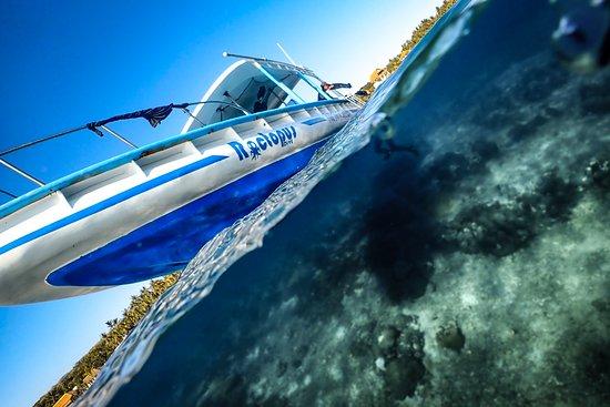 Roctopus Dive Lembongan