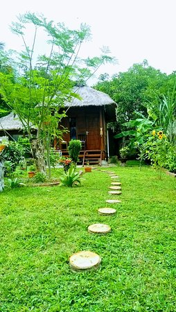 Lokasi di papaya lodge