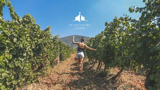 Demir Kapija, Republiek Macedonië: Winetours.guru, your best wine guide onile!