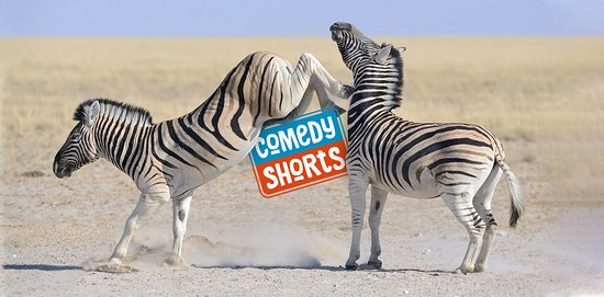 ComedyShorts Berlin