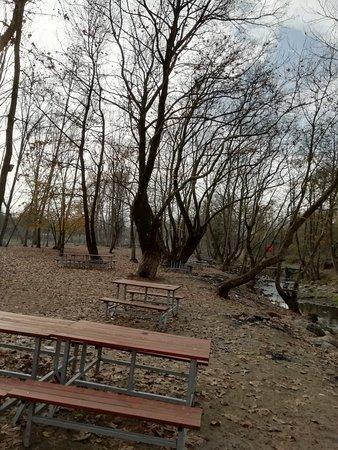 Ballıkayalar Tabiat Parkı