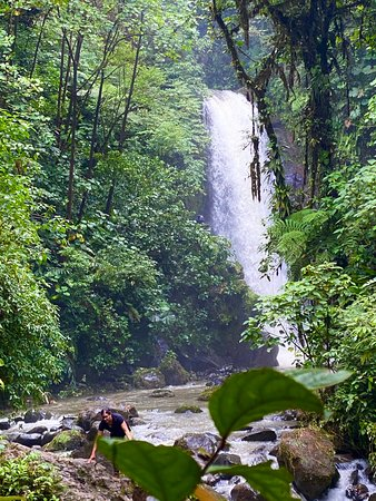 8-Day Tour: Jewels of Costa Rica: La Paz waterfall (one of 5)