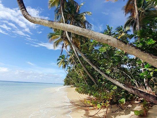 Tobago Traumstrände, Trinidad Tobago, Westindies, Karibik