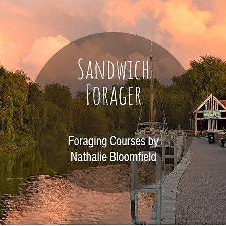 Sandwich Fotografie