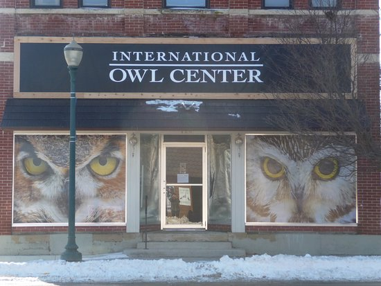 Houston, MN: Our front windows feature owl faces that are hard to miss.