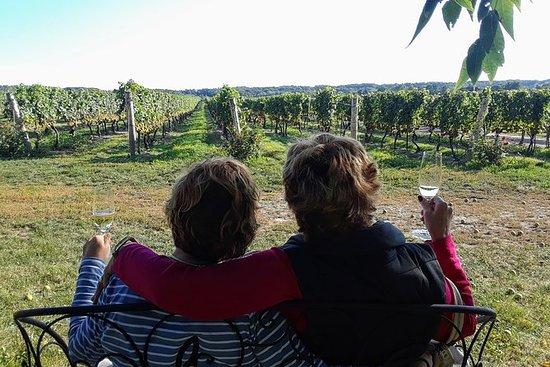 Excursão vinícola de dia inteiro em Niágara com almoço em Niagara-on-the-Lake e passeio de barco opcional: Full-Day Niagara Wine Tour with Sommelier Guide from Toronto -Shared Small Group