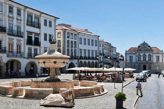 埃武拉(Evora)软木市,骨头教堂和高级品酒会