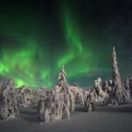 Arctic Hospitality