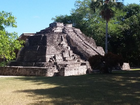 Chacchoben Mayan City Tour With Certified Guide: Mayan ruins