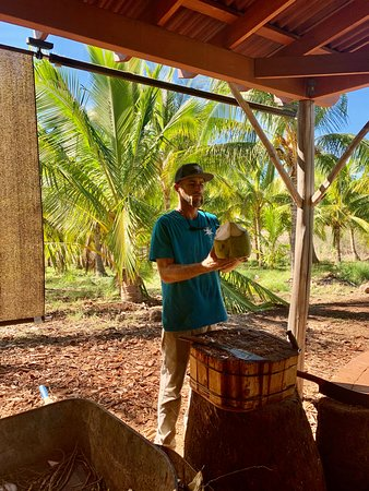 Mikey, his machete, and a coconut.