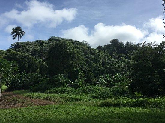 Rarotonga Îles Cook du Sud, Îles Cook