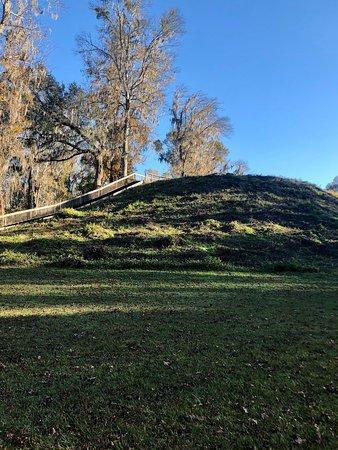 Ảnh về Lake Jackson Mounds Archaeological State Park