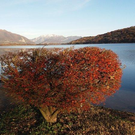 Alserio, إيطاليا: Lago di Alserio