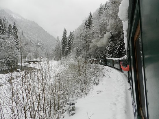 Northwest Romania, Romênia: Mocanita , steam train on Wasser valey , Maramures !