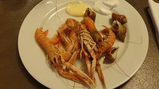 Langoustines - Bulots - Crevettes à volonté