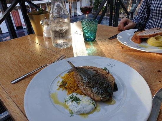 Delicious mackerel!
